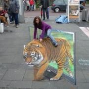 3D Картины животных